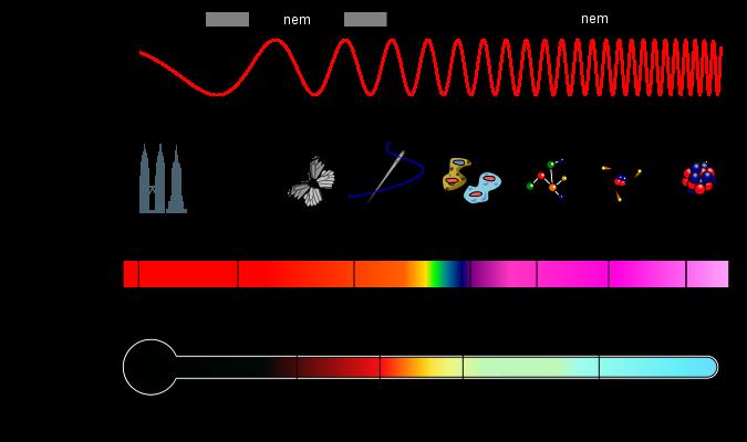 a sugárzás káros hatása a látásra a wobenzym alkalmazása a szemészetben